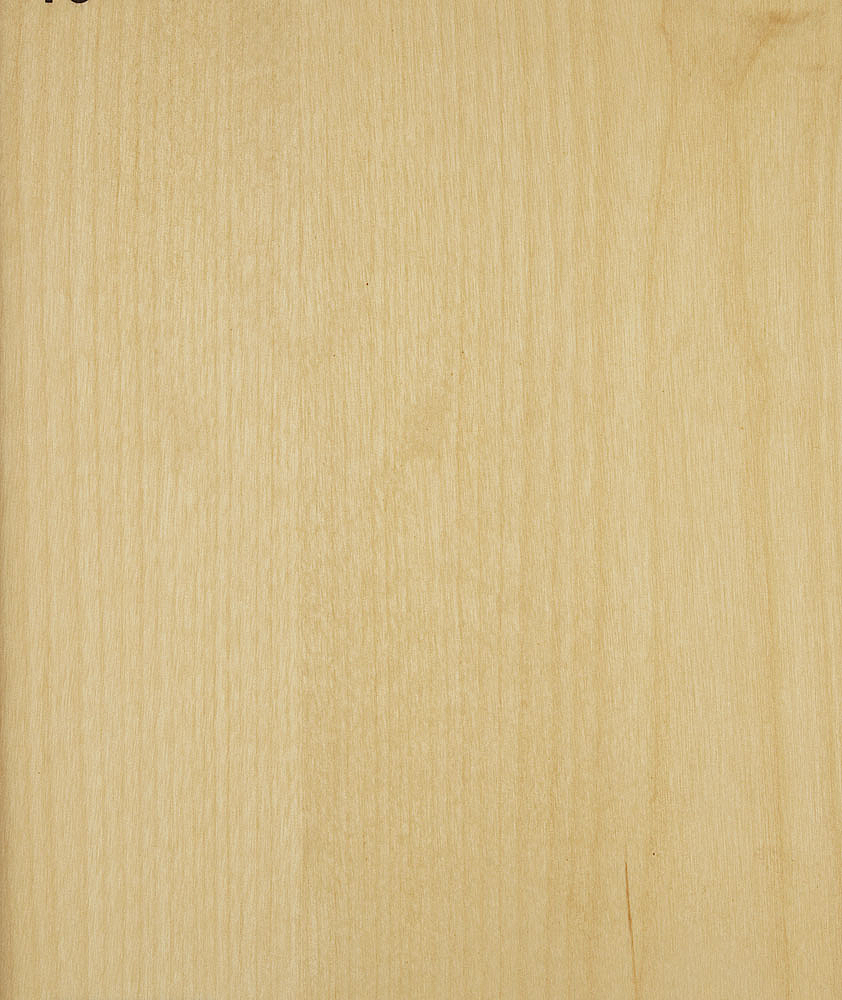 2 11 tec ref deco photo birch sliced 10