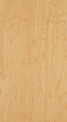 Birds-eye Maple