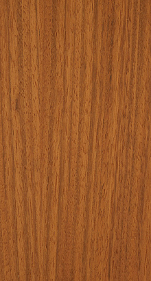 Jatoba / Courbaril - Hymenaea courbaril