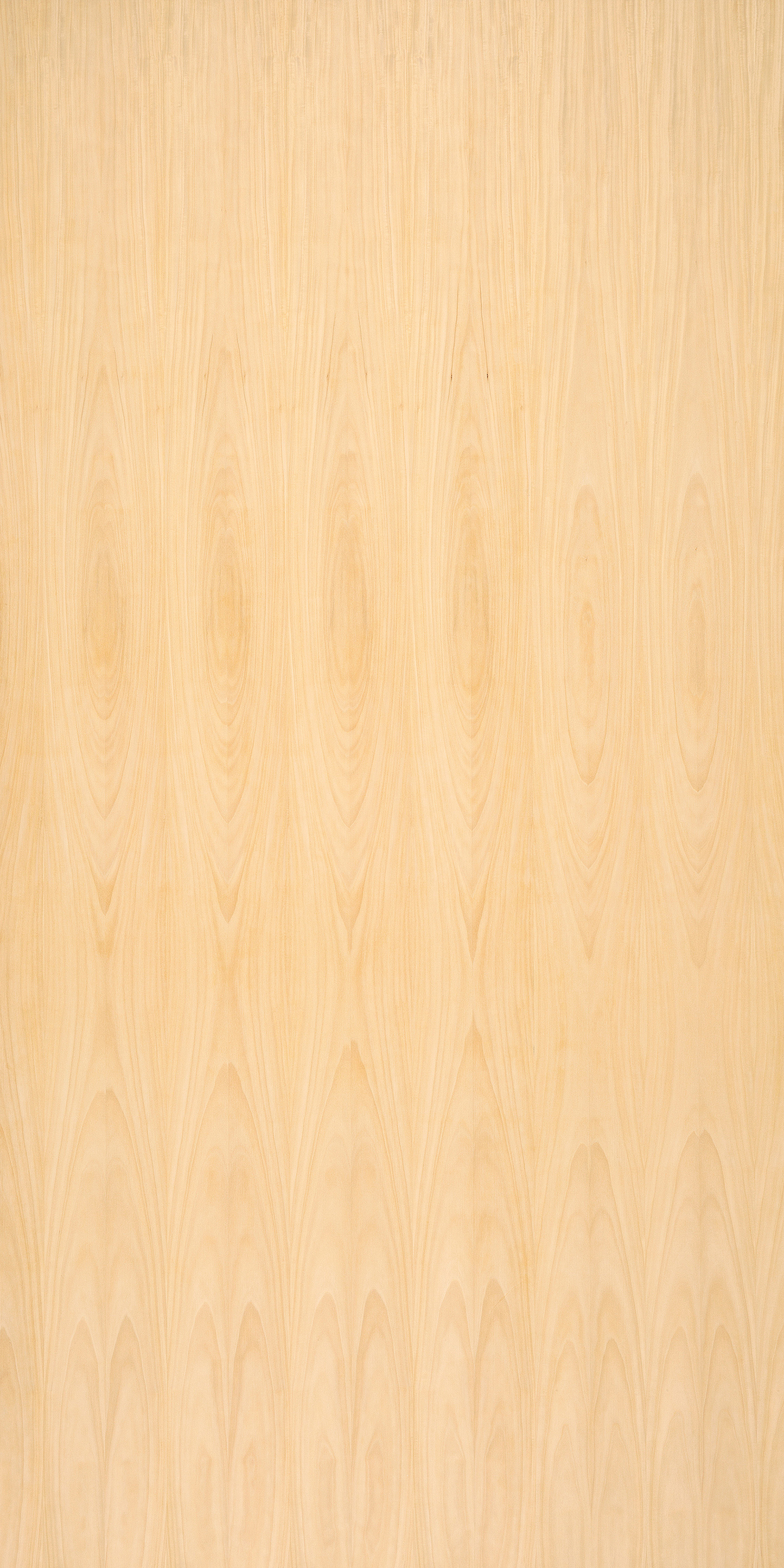 satinwood quartercut 2440x1220