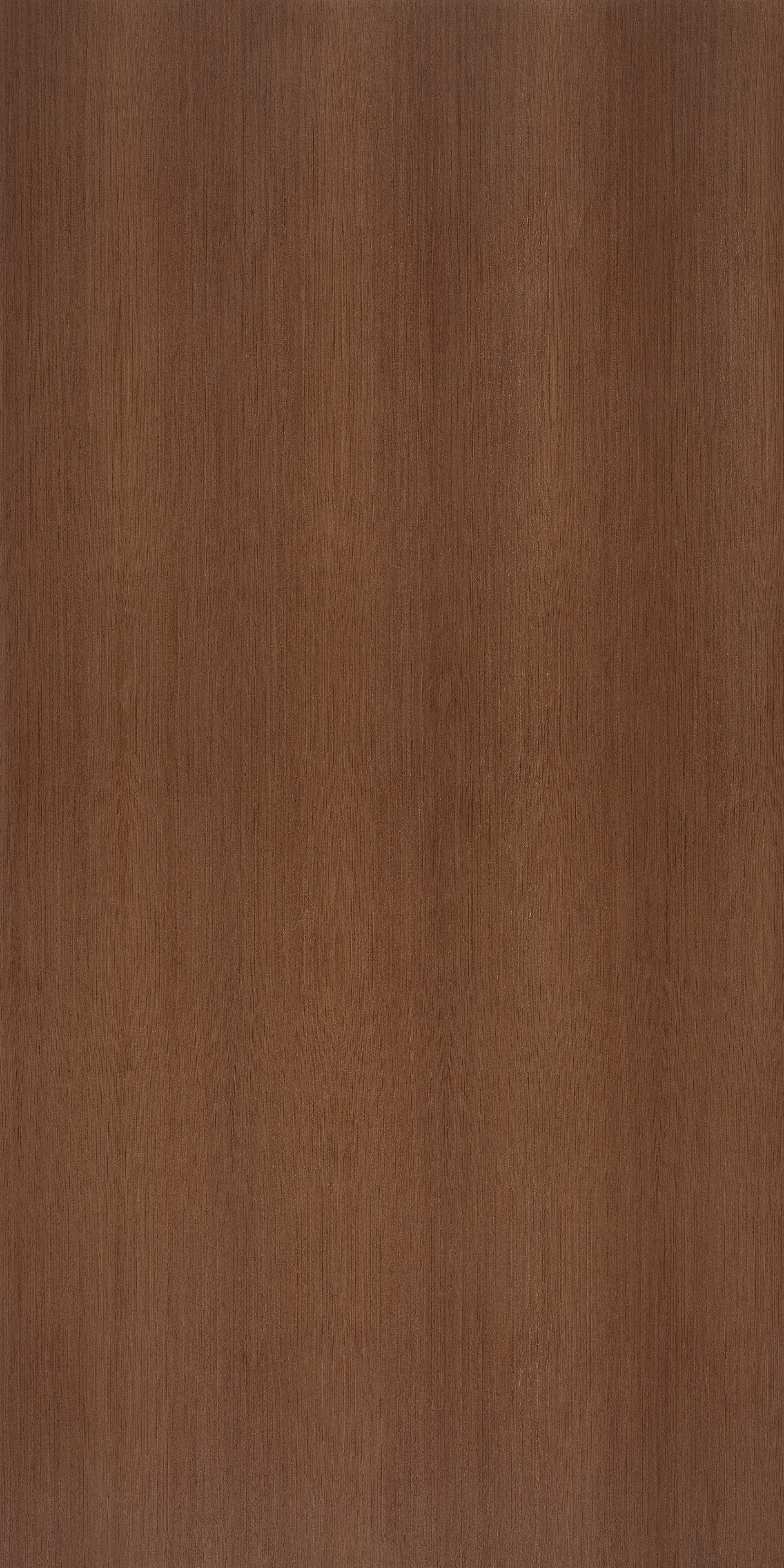 wenge quartercut 2440x1220
