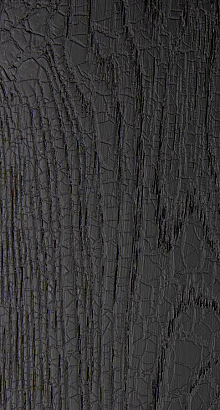 Chêne black burned texture - Quercus